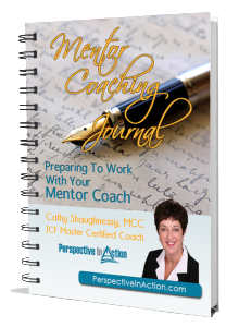 mentor coaching journal
