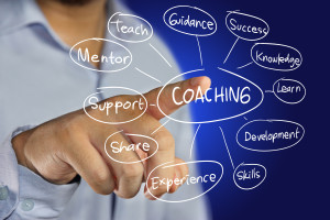 coaching program for business