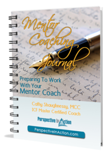 Mentor-Coaching-Journal-