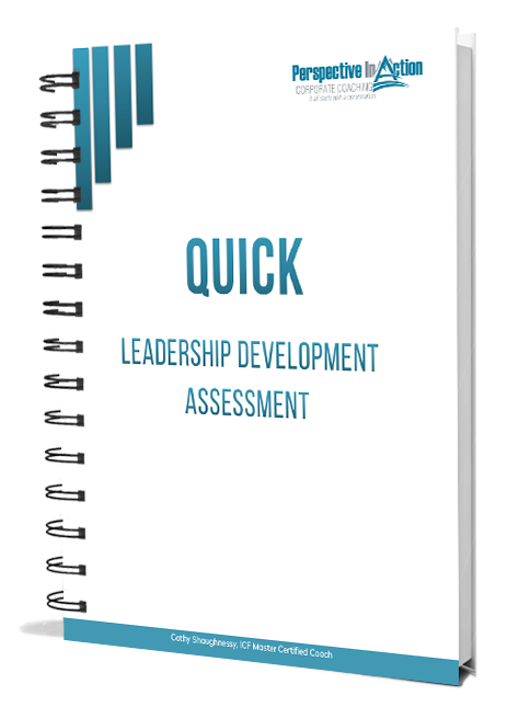 leadership development tool