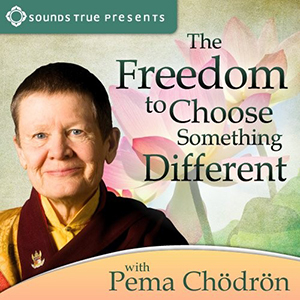 Cathy Recommends: The Freedom to Choose Something Different