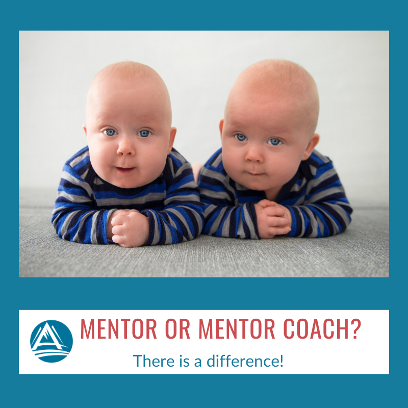 Mentor or Mentor Coach